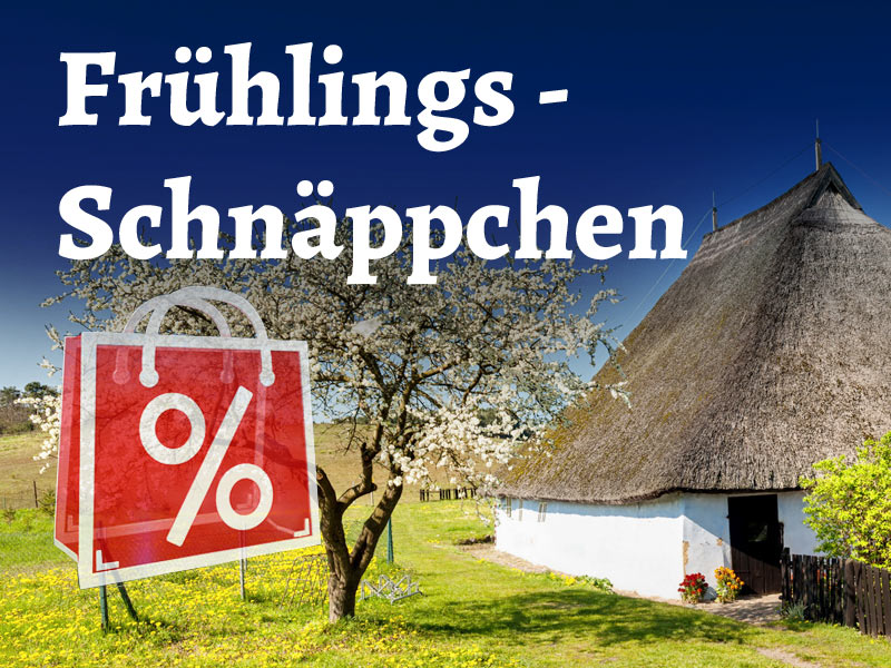 Amazon Frühlings Deals & Angebote